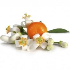 Нероли (апельсиновые цветы) эфирное масло (1 мл)